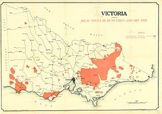 Black Friday bushfires Series of bushfires in Australia in 1939