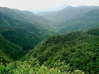 Black River Gorges National Park - Black River Gorges National Park
