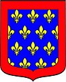 Blason De Pierre de France.jpg