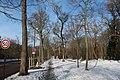 Bois de Boulogne neige 9.jpg
