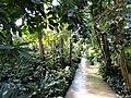 Botanischer Garten München-Nymphenburg - DSC07983.JPG
