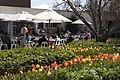 Bowral NSW 2576, Australia - panoramio (20).jpg