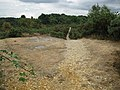 Bronze Age Barrow, Frensham Common - geograph.org.uk - 1384624.jpg