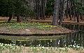 Brookgreen Gardens 44 (3332422145).jpg