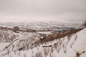 Lebanon Mountain Trail - Bsharri in Winter