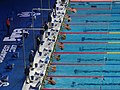 Budapest2017 fina world championships - 100backstroke final.jpg