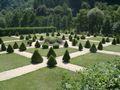 Buerresheim Garten.jpg