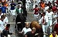 Bull Run Clemson (cropped).jpg