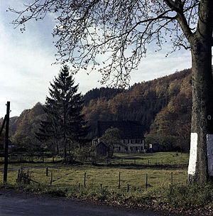 Herbstmusik - Autumn in the Bergisches Land, 1960