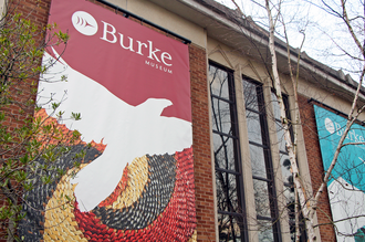 Burke Museum of Natural History and Culture - Exterior of the Burke Museum pictured in 2015