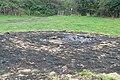 Burnt field in Berkshire - geograph.org.uk - 981360.jpg