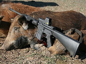 .450 Bushmaster - The 450 Bushmaster was developed for big game hunting with modern rifles.