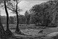 C.A. Kølle - Landskab med motiv fra Fuglsangssøen i Jægersborg Dyrehave - KMS3835 - Statens Museum for Kunst.jpg