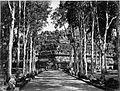 COLLECTIE TROPENMUSEUM De laan die leidt naar het Boeddhistisch tempelcomplex Boroboedoer. TMnr 60005152.jpg