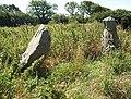Cae'r-Hen-Eglwys Standing Stones - geograph.org.uk - 937991.jpg