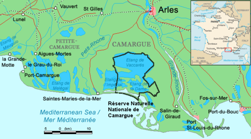 http://upload.wikimedia.org/wikipedia/commons/thumb/d/d8/Camargue_map.png/500px-Camargue_map.png