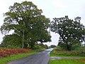 Camer's Green - geograph.org.uk - 1019276.jpg