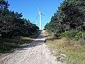 Camino Primitivo, Monte da Curiscada 05.jpg
