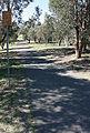 Canberrabikepathwiki.jpg