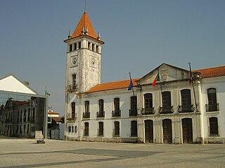Cantanhede, Portugal Municipality in Centro, Portugal