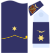 Captain general of the Air Force 14ab.png