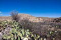 Carlsbad Caverns National Park and White's City, New Mexico, USA - 48345025227.jpg