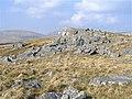 Carreg Lem - geograph.org.uk - 399147.jpg