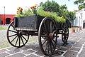 Carreta floral.jpg
