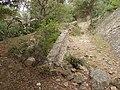 Castell de Requesens 2012 07 13 17.jpg