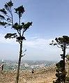 Castelo dos Mouros, Sintra. (40135001200).jpg