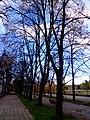Centar, Skopje 1000, Macedonia (FYROM) - panoramio (302).jpg