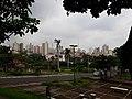 Centro de Catanduva visto do Bairro São Francisco.jpg