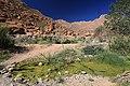 Cesta ke skalním malbám v masívu Brandberg - panoramio.jpg