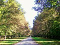 Chantilly (60), Petit Parc, route d'Avilly, près de la grille d'Avilly.jpg