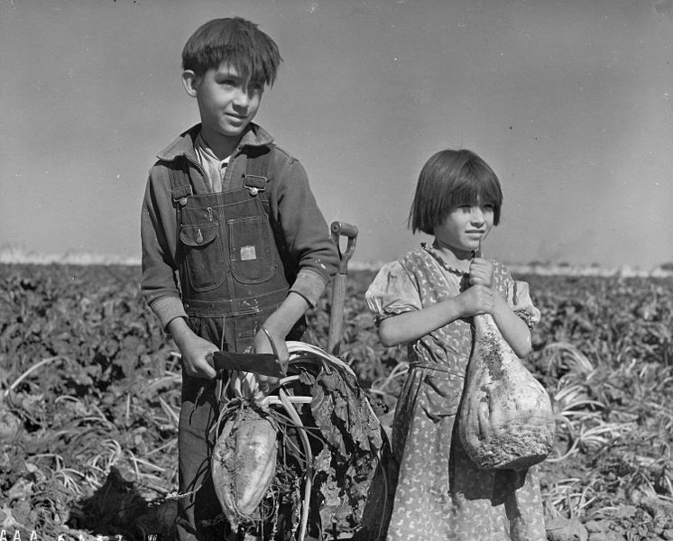 File:Children and Sugar beets Nebraska 1940.jpg