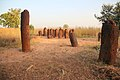 Circles of stone in Wassu Gambia have a particular history.jpg