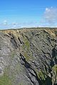 Cliff (3471744786).jpg