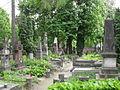 Cmentarz Powązkowski w Warszawie SDC11590.JPG