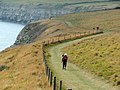Coast path towards Seacombe - geograph.org.uk - 1621187.jpg