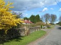 Coastguard Cottages, Ross - geograph.org.uk - 153493.jpg