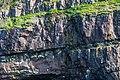 Coastline St John Newfoundland (26493453397).jpg