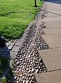 Cobbles beside the Cathedral path, Exeter - geograph.org.uk - 812931.jpg