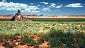 Coconino County, AZ, USA - panoramio (108).jpg