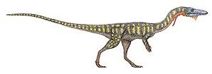 Coelophysoidea - 80 px