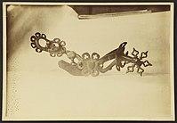 Collection de Chasteigner - J-A Brutails - Université Bordeaux Montaigne - 0291.jpg