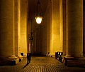 Colonnade of St. Peter at night.jpg