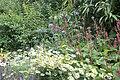 Colorful flower bed (5881457093).jpg