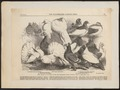 Columba livia - 1864 - Print - Iconographia Zoologica - Special Collections University of Amsterdam - UBA01 IZ18900109.tif
