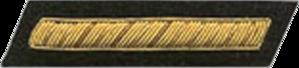 Luke Edward Wright - Image: Confederate States of America Second Lieutenant