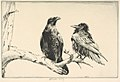 Conversation Piece - Ravens MET DP832890.jpg